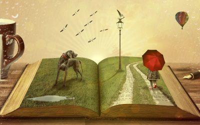 Buch Bogenschießen